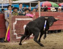Un «air de» Toréro – San Mateo de Quilcate – Pérou